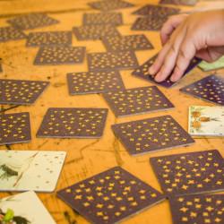 Pica Memo - un juego de memória poco habitual