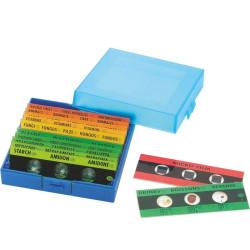 Portaobjetos con muestras para Microscopio