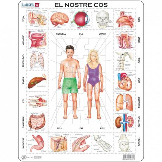 Puzle Educatiu Larsen 35 peces - El Nostre Cos (Català)