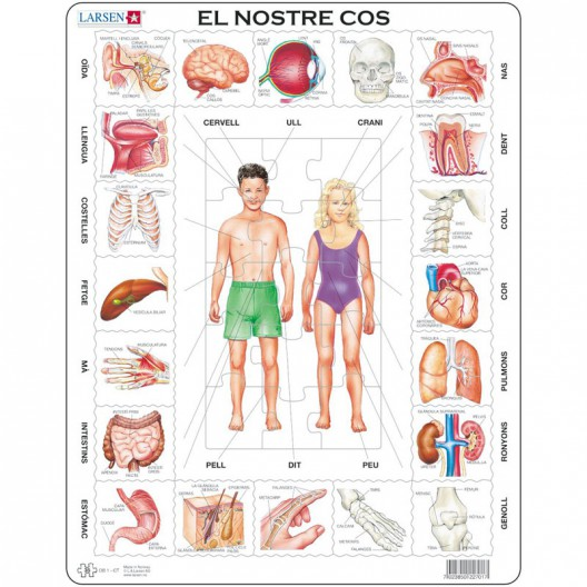 Puzle Educativo Larsen 35 piezas - El Nostre Cos (Catalán)