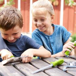 Terra Kids - Juego de limas